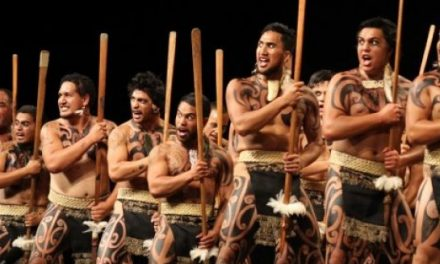 The only Māori in the room