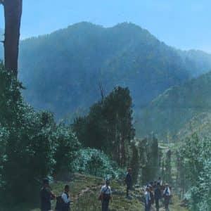 Police cross Te Urewera hinterland to reach Maungapōhatu. (Alexander Turnbull Library)