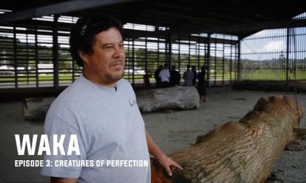 WAKA Episode 3: Creatures of perfection