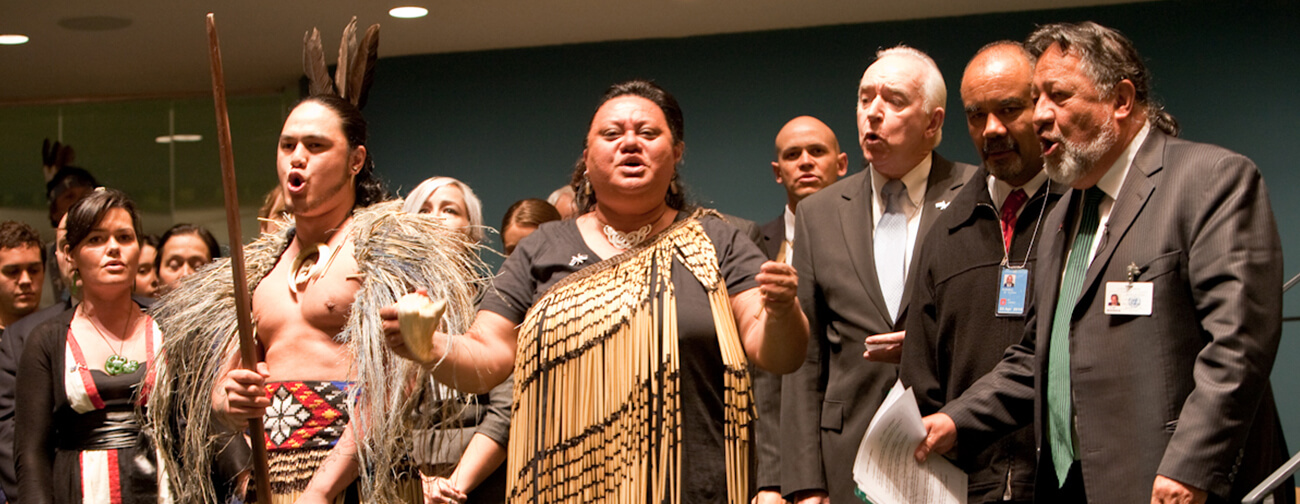 From the Ninth Session of the Permanent Forum on Indigenous Issues. New Zealand delegation celebrates the endorsement by the Government of New Zealand of the United Nations Declaration on the Rights of Indigenous Peoples. Photo: Broddi Sigurdarson. (c) 2010 UNPFII.