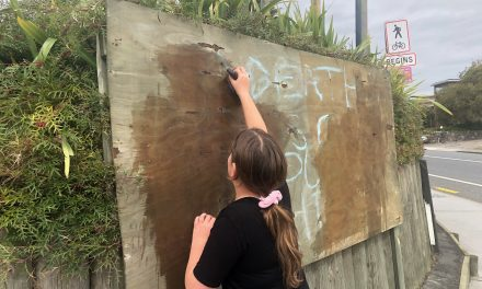 Fighting misinformation: 'We need to wānanga'